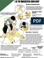 salvar a tu mascota con RCP.pdf