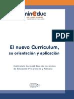 Orientacion Aplicacion Nuevo Curriculum