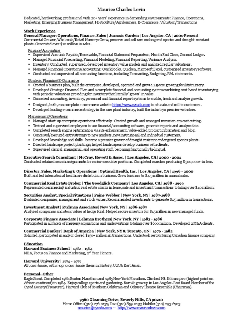 Maurice Levin Resume 2014 | Service Industries | Business