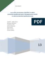 Proiect Managementul Proiectelor Si Programelor