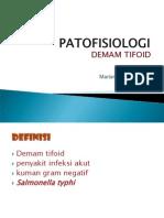 Patofisiologi demam tifoid