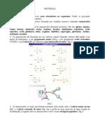 Apostila de Bioquimica ATUAL