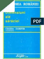 1995 Dimensiuni Ale Saraciei