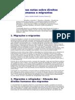 Algumas Notas Sobre Direitos Humanos e Migrantes