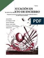 mineraymara-educacionencontextodeencierro (1)