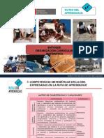 Capacidades e Indicadorea 21022013