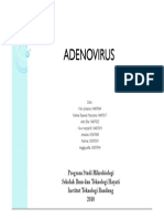 Adenovirus.new