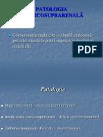 11. PATOLOGIA CORTICOSUPRARENALÃ 2- varianta scurta