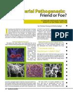 Bacterial Pa Tho Genesis -- Friend or Foe