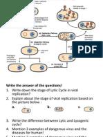 Virus Life Cycle