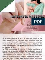 Lactancia Materna Aps