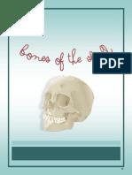 37 Skull