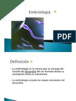 Tema 6 Embriologia
