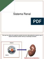 44. Generalidades de la Fisiología Renal