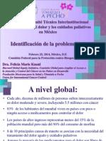 Reunión del Comité Técnico Interinstitucional para el control del dolor y los cuidados paliativos en México.