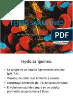 1publicacion Histologia Tejido Sanguc3adneo