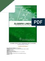 Algebra Lineal Para Administracion y Economia