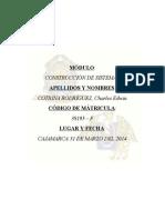 CONSTRUCCIÓN DE SISTEMAS