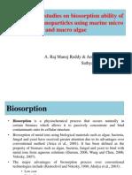 Comparative Studies on Biosorption Ability of Metal Oxide Nanoparticles Using Marine Micro and Macro Algae (1)