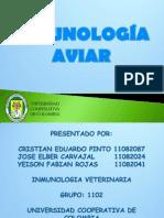 INMUNOLOGIA_AVIAR