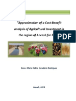 Approximation of a Cost-Benefit analysis of Agricultural Investment in the region of Ancash for 2011