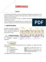 TEMA 5. Membranas