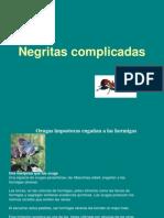 Seminario Hormigas Negritas Complicadas