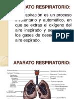 PRESENTACION APARATO RESPIRATORIO ( 3)