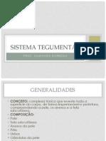 2.3 - Sistema Tegumentar