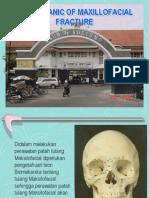 02 Biomechanic Pp