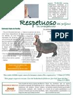 Respetuoso-a8