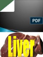 QUIBOD liver