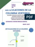 Articulaciones de Columna Vertebral