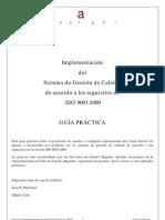 Guía_de_implementación