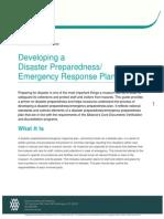 Developing a Disaster plan.pdf