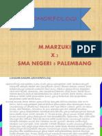 GEOMORFOLOGI1