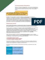 Caracteristicas pliometria