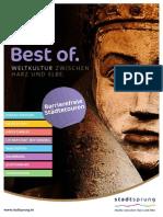 Stadtsprung-Flyer-barrierefrei.pdf