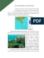 Cagar Alam Laut Kepulauan Aru Tenggara
