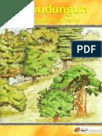 Mapudungun el lenguage de la tierra.pdf