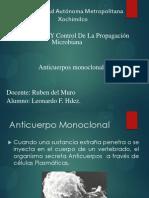 anticuerposmonoclonales-130226042658-phpapp02