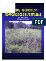 aspectosfisiologicosymorfologicosdemalezas