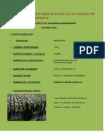 Informe Final de Gobernanzas de Las Organizaciones