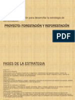 Plan de comunicación en forestación y reforestación