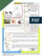 Ejercicios Para Sindrome Secretaria Del Mmss