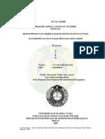 sistem pendataan objek pajak bumi dan bangunan pada kantor pelayanan pajak pratama meulaboh