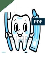 Jenis-Jenis Gigi Dan Fungsinya