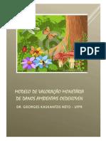 Modelo de Valoração de Danos Ambientais - OEDEKOV