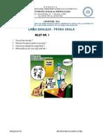 Subiecte Engleza Oral Bune