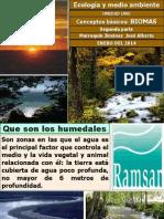 2014 unidad 1 ecología parte dos